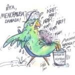 Menopausa e Nutrição Funcional