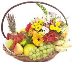 Primavera e Alimentação