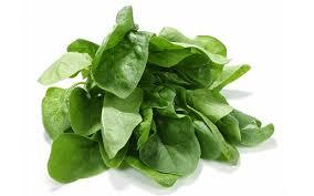 Glossário de Alimentos: Espinafre