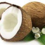 Glossário de Alimentos: Óleo de coco