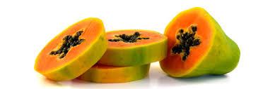 Creme de Mamão Papaya Proteico